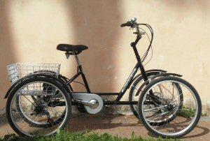 La Bicicletta A Pedalata Assistita Da Motore Elettrico A Quattro